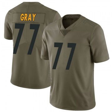 Men's Nike Pittsburgh Steelers Derwin Gray Green 2017 Salute to Service Jersey - Limited