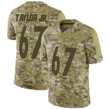 Youth Nike Pittsburgh Steelers Calvin Taylor Jr. Camo 2018 Salute to Service Jersey - Limited