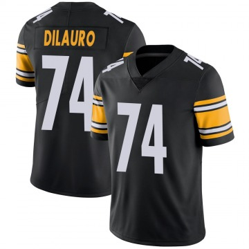 Youth Nike Pittsburgh Steelers Christian DiLauro Black 100th Vapor Jersey - Limited