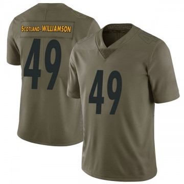 Youth Nike Pittsburgh Steelers Christian Scotland-Williamson Green 2017 Salute to Service Jersey - Limited