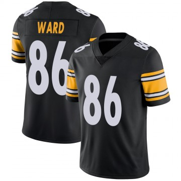 Youth Nike Pittsburgh Steelers Hines Ward Black 100th Vapor Jersey - Limited
