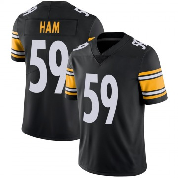 Youth Nike Pittsburgh Steelers Jack Ham Black 100th Vapor Jersey - Limited