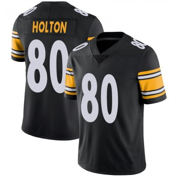 Youth Nike Pittsburgh Steelers Johnny Holton Black 100th Vapor Jersey - Limited