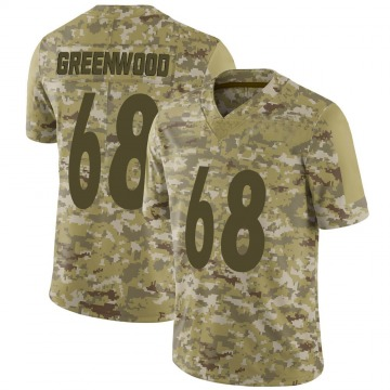 Youth Nike Pittsburgh Steelers L.C. Greenwood Green Camo 2018 Salute to Service Jersey - Limited