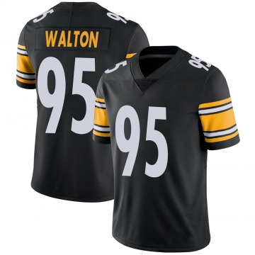Youth Nike Pittsburgh Steelers L.T. Walton Black 100th Vapor Jersey - Limited