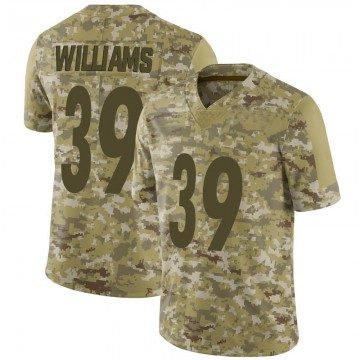 Youth Nike Pittsburgh Steelers Malik Williams Camo 2018 Salute to Service Jersey - Limited