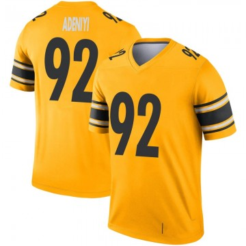 Youth Nike Pittsburgh Steelers Olasunkanmi Adeniyi Gold Inverted Jersey - Legend
