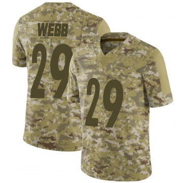 Youth Nike Pittsburgh Steelers Ralph Webb Camo 2018 Salute to Service Jersey - Limited