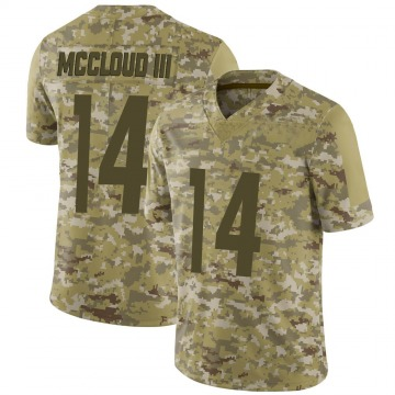 Youth Nike Pittsburgh Steelers Ray-Ray McCloud III Camo 2018 Salute to Service Jersey - Limited