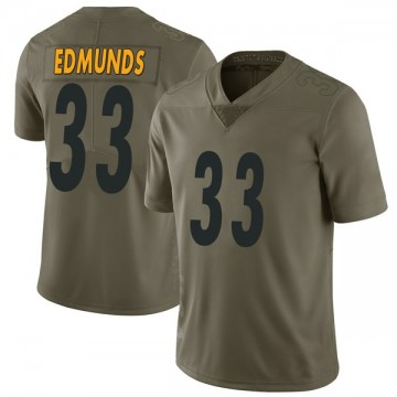 Youth Nike Pittsburgh Steelers Trey Edmunds Green 2017 Salute to Service Jersey - Limited