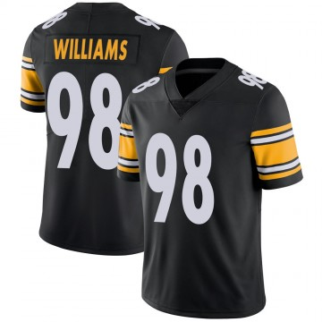 Youth Nike Pittsburgh Steelers Vince Williams Black 100th Vapor Jersey - Limited