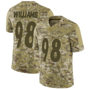 Youth Nike Pittsburgh Steelers Vince Williams Camo 2018 Salute to Service Jersey - Limited