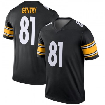 Youth Nike Pittsburgh Steelers Zach Gentry Black Jersey - Legend